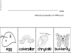 1000+ images about *Primary Grade Science Fun on Pinterest
