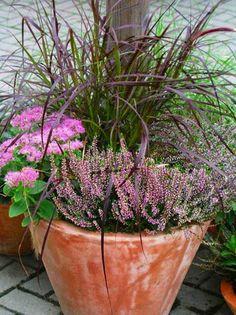 Balkonkästen Herbstlich Bepflanzen Gardens 3 And Fall Arrangements