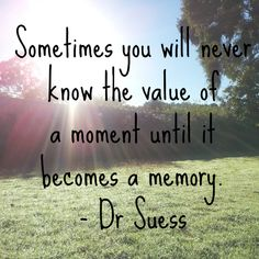Sometimes-you-will-never-know-the-value-of-a-moment-until-it-becomes-a-memory.jpg 590×590 pixels quote