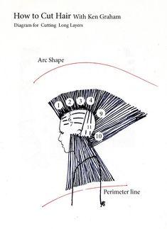 diagram haircut  Buscar con Google | diagram haircut