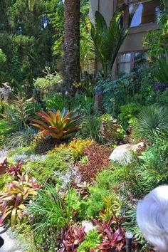 Sub Tropical Garden Design Nz Google Search Garden Design