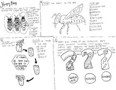 5th Grade STAAR review coloring sheet Energy and Light