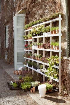 Grow Lettuce In Gutter Gardens Gardens A 4 And Urban Gardening