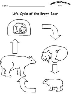 PATTIES CLASSROOM: Polar Bear Activities, Polar Bear Polar