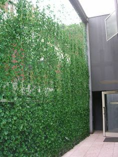 I Like This Living Wall Atrium By Lakisha Landscape