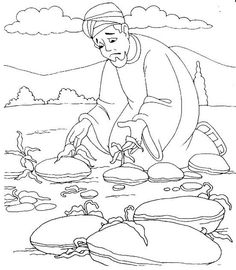 1000+ images about Bible: NT Parable of Sower on Pinterest