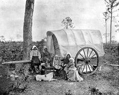 Free Multnoma Falls Winter Wallpaper Wagon Trains West On Pinterest Oregon Trail Covered