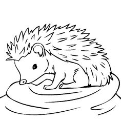 1000+ images about Animal themed crafts/coloring pages on