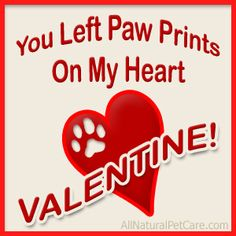 Image result for valentine's day poems from canine