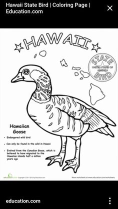 State outline, Coloring pages and Coloring on Pinterest