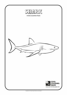 White shark coloring page from Monterey Bay Aquarium