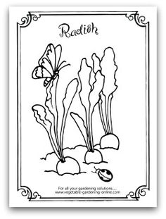 Free printable vegetable garden word match worksheet for