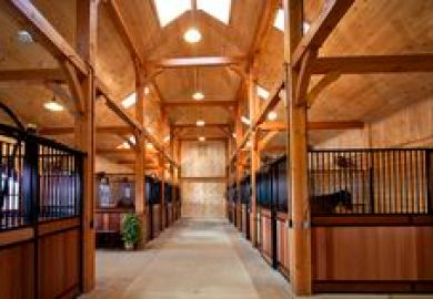 Basic Horse Stall Building Guide For Stall Doors And