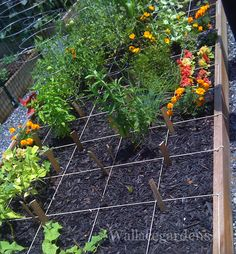 Garden Plot Idea 2 Gardening Inspirations Pinterest Gardens