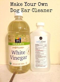 ... Cat Recipe also 104638391315944411. on home remedies for dry skin on