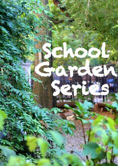 Fun And Educational Garden Activities For Kids Gardens For Kids