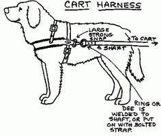 Therapy dogs, Vests and Vest pattern on Pinterest