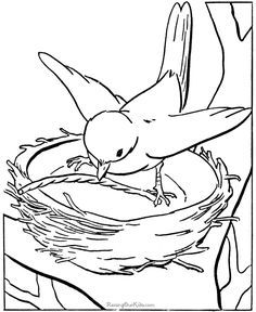 istockphoto_4364427-dove-symbol-of-peace-on-earth.jpg