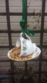 1000+ ideas about Teacup Bird Feeders on Pinterest