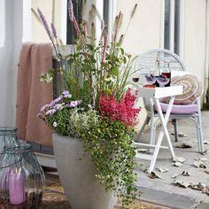 Herbst Pflanzen Und Deko Für Balkon Und Terrasse Gardens And Plants