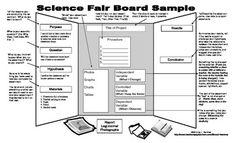 SCIENCE FAIR MIDDLE SCHOOL DISPLAY BOARD GRADE 5/6 EXAMPLE