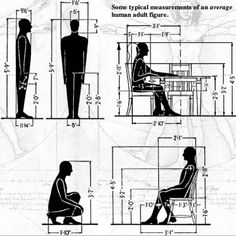 Ergonomics deals with the dimensions and movement of