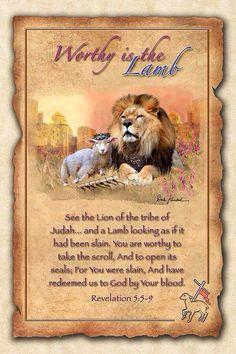 Lamb Amp Lion