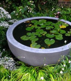 30 Fresh Mini Ponds For Little Garden Ideas Home Design And