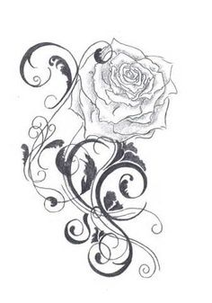 1000+ images about gardenia tattoos on Pinterest
