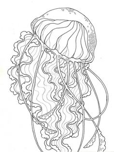 Printable jellyfish coloring page. Free PDF download at