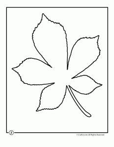 1000+ images about 3-D flower petal patterns on Pinterest