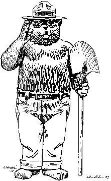 1000+ images about Teaching-Smokey Bear on Pinterest
