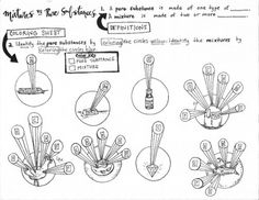 1000+ images about Biology and other sciences on Pinterest