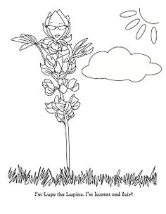 Sunflower.. Printable coloring and activity page for the