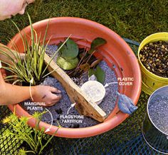 Container Water Garden Home Ideas Pinterest Gardens The O