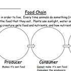 1000+ ideas about Food Chain Diagram on Pinterest