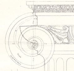 Ionic Order Capital, Architectural Drawing Print by