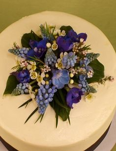 Blue Delphinium Curly Willow And Delphiniums On Pinterest