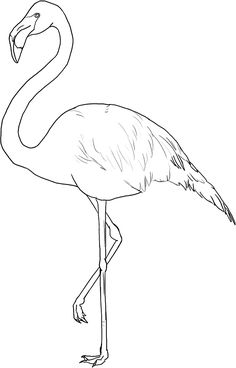 Flamingo pattern. Use the printable outline for crafts