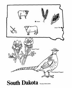 Indiana State outline Coloring Page. Copy the image and