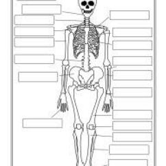 The Human Skeleton Diagram Fill In Blanks How A Water Softener Works List Of Synonyms And Antonyms Word Blank Unlabeled
