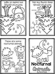 1000+ images about Nocturnal Animal preschool Theme on
