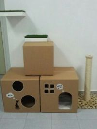 1000+ ideas about Cardboard Cat House on Pinterest | Cat ...