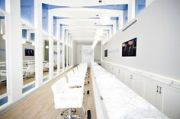 1000 amazing salons