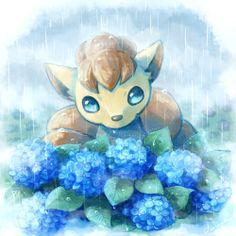 Cute Boy Wallpaper Mobile9 1000 Images About Pokemon On Pinterest Pokemon Mew