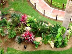 Tropical Decorating Ideas Garden & Landscaping Philippines
