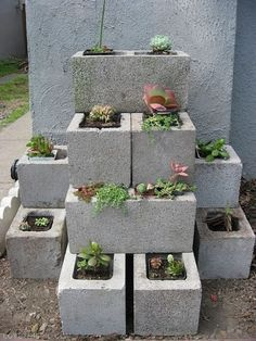 DIY Vertical Gardening Pictures Photos And Images For Facebook