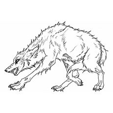 Anime wolf, Coloring pages and Wolves on Pinterest