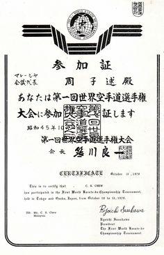 Certificado de Logro en Artes Marciales para imprimir los