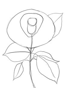 Rose drawings, To draw and Pencil drawings of flowers on